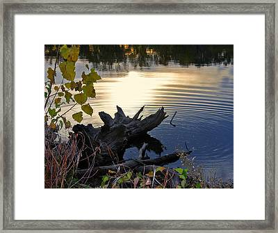 Framed Print featuring the photograph The Ole Fishing Hole by Ellen Tully