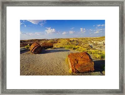The Painted Desert Framed Print by Jeff Swan