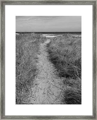 Framed Print featuring the photograph The Path by Glenn DiPaola