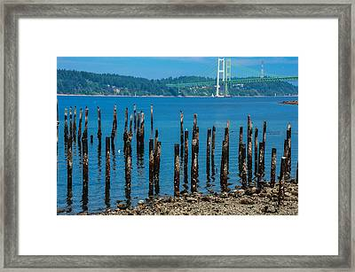 The Replacement Framed Print