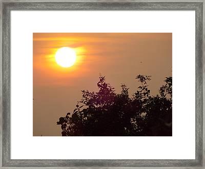 The Rising Sun Framed Print by Prashant Ambastha