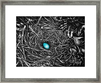 The Robin's Egg Framed Print by Craig T Burgwardt