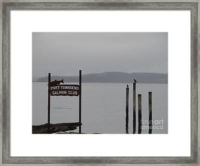 The Salmon Club Framed Print