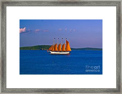 The Schooner Margaret Todd. Framed Print