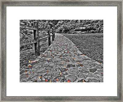 The Stone Path Framed Print