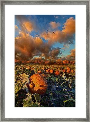 The Survivors Framed Print by Phil Koch