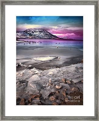 The Thaw Framed Print by Tara Turner