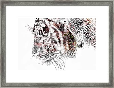The Tiger Framed Print by Tommytechno Sweden