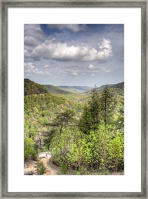 The Valley II Framed Print by David Troxel