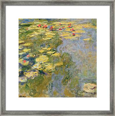 The Waterlily Pond Framed Print