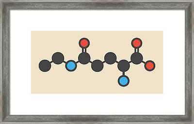 Theanine Herbal Molecule Framed Print