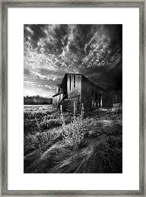 There Was A Time Framed Print by Phil Koch