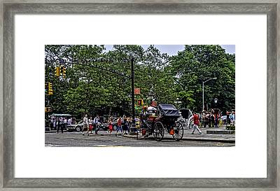 They Come To Central Park Framed Print