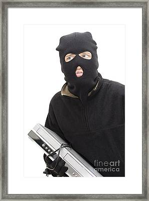 Thieving Tom Framed Print by Jorgo Photography - Wall Art Gallery