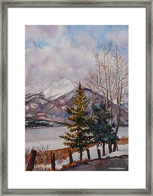 Thinking About Spring Framed Print by Anne Gifford