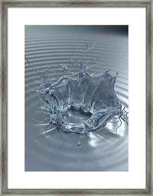 Thirst-regulating Neurons Framed Print by Equinox Graphics/science Photo Library
