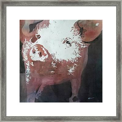 This Little Piggy Framed Print by Tammy Tatum