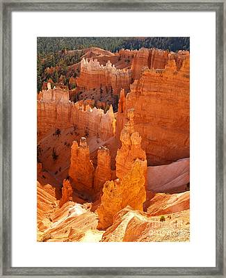 Thor's Hammer At Bryce Canyon Framed Print