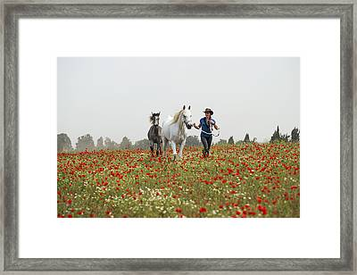 Three At The Poppies' Field... 3 Framed Print