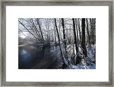 Through The Trees Framed Print by Svetlana Sewell