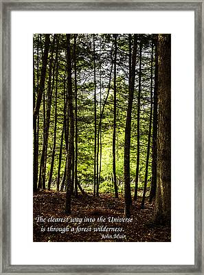 Thru The Trees With John Muir Quote Framed Print by Marilyn Carlyle Greiner
