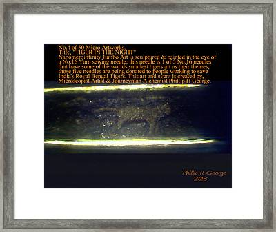 Tiger In The Night  Framed Print by Phillip H George