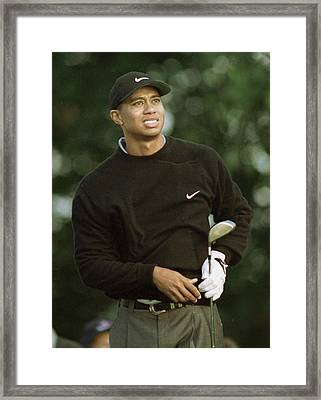 Tiger Woods. Framed Print