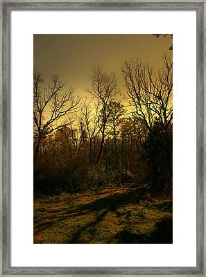 Time Of Long Shadows Framed Print by Nina Fosdick