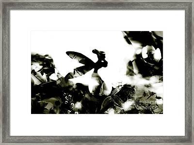 Tinker Bell Framed Print by Jessica Shelton