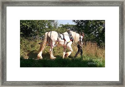 Tiverton Barge Horse Framed Print