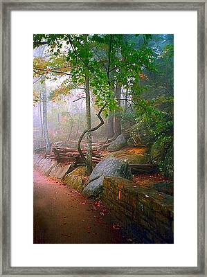 To The Pinnacle Framed Print