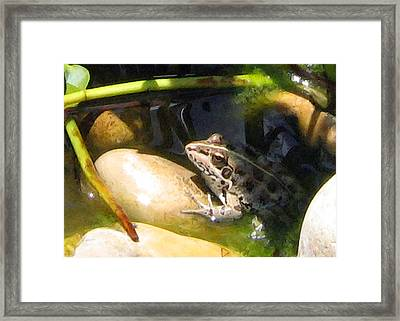 Framed Print featuring the digital art Toad by Helene U Taylor