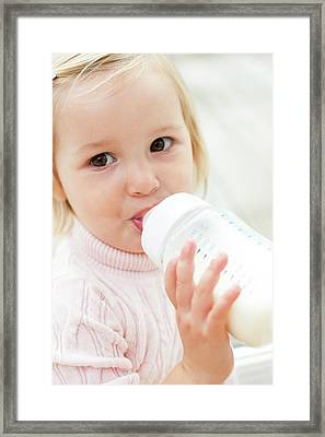 Toddler Holding A Bottle Of Milk Framed Print by Ian Hooton