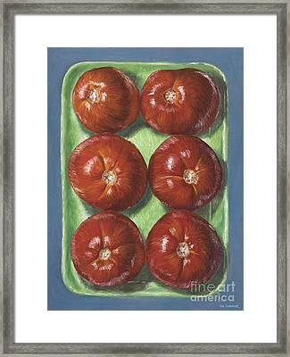 Tomatoes In Green Tray Framed Print by Jim Zahniser