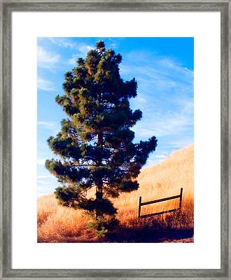Tower Of Strength Framed Print by Ron Regalado