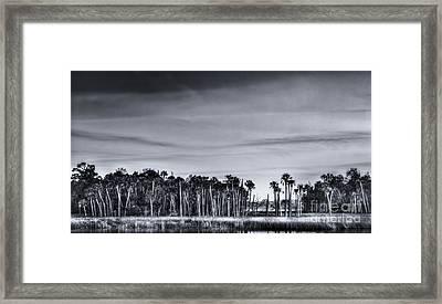 Tranquil Hammock Framed Print