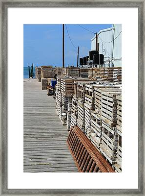 Traps Waiting Framed Print by R B Harper