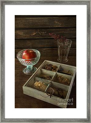 Treasures Framed Print by Elena Nosyreva