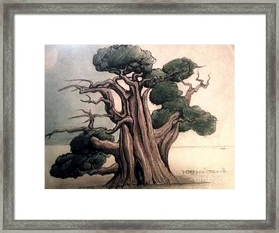 Tree Framed Print by Justin Moranville