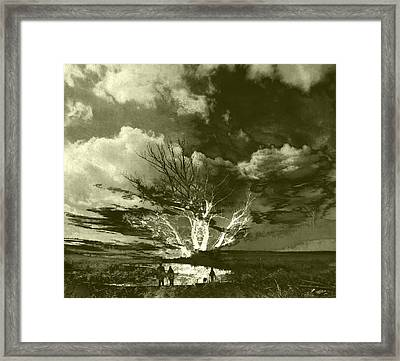 Tree Romance Framed Print by Florin Birjoveanu