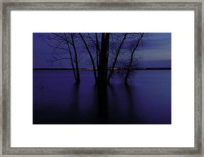 Tree Silhouette Framed Print by Andre Faubert