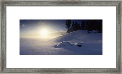 Trees Along A Frozen Lake, Saimaa Framed Print by Panoramic Images