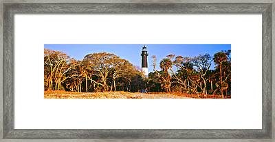 Trees Around A Lighthouse, Hunting Framed Print