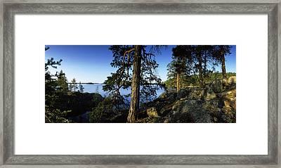 Trees At The Lakeside, Saimaa, Puumala Framed Print