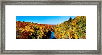 Trees In Autumn At Dead River Framed Print