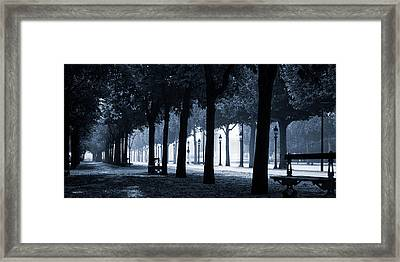 Trees On Both Sides Of A Walkway Framed Print
