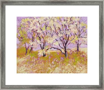 Trees Il Framed Print by J Reifsnyder