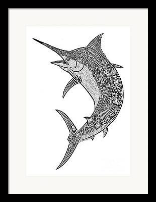 Black Marlin Drawings Framed Prints