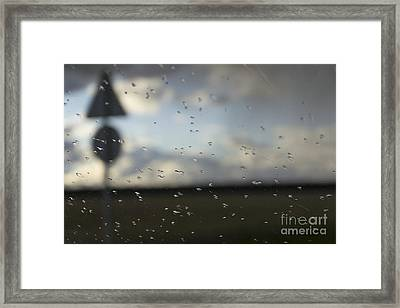 Trip And Rain Framed Print