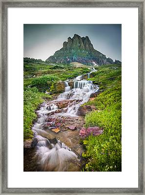 Triple Falls Stream Glacier National Park Framed Print